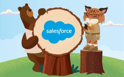 Webinar Saleforces : l'acquisition client B2C